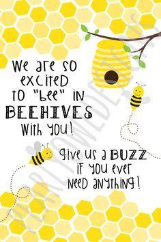 Image result for new beginnings beehive spotlight
