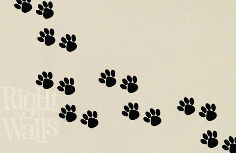 Wall Decals Decorate Your Animal Hospital or Veterinarian Office!   Right On The Walls
