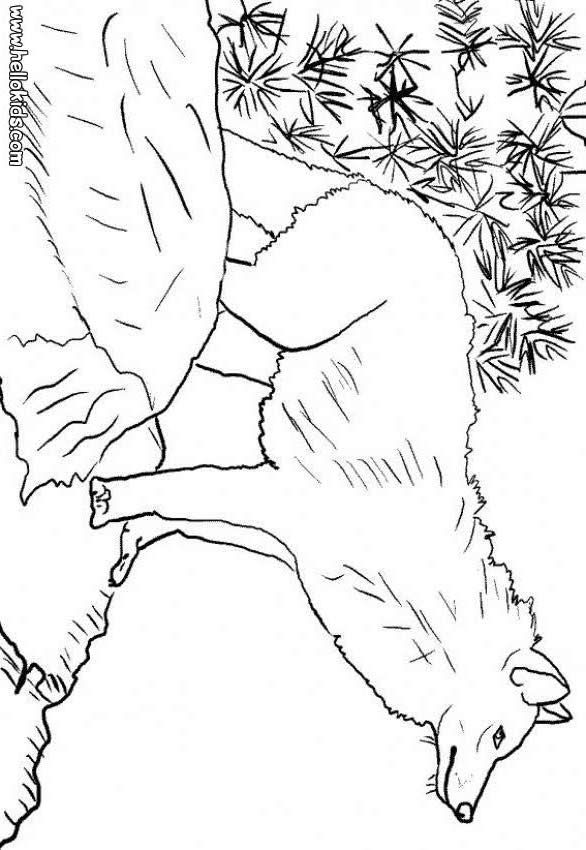 Wolf To Print Coloring Page You Will Love Color A Nice Enjoy This For Free