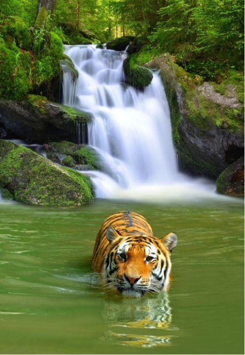 Awesome Asia   www.wallartprints.com.au #AsianPhotography #TravelPhotography