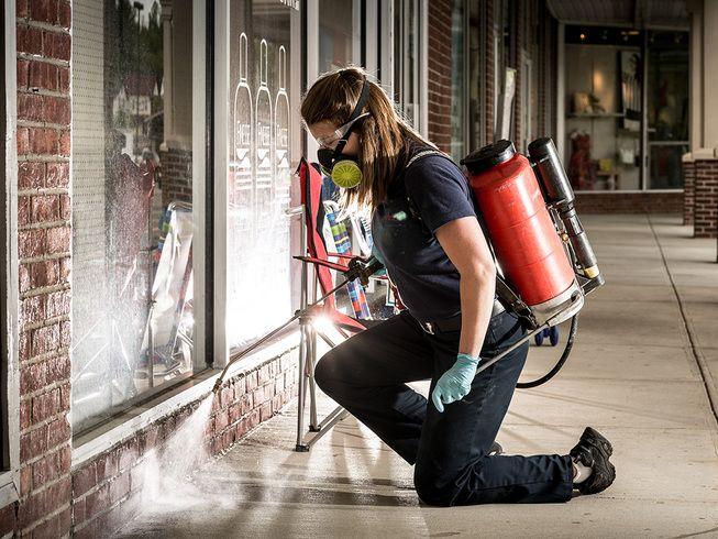 Commercial pest control #pestcontrol #commercial #AllClearPest