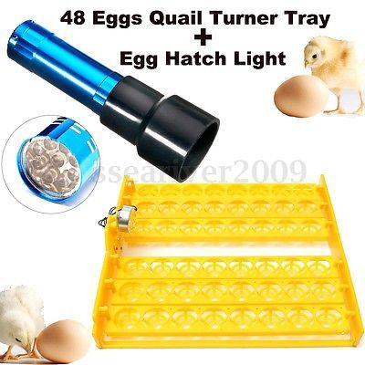 48 Eggs Quail Poultry Chicken Incubator Turner Tray and Egg Candler Egg Lamp