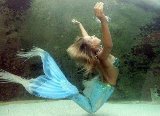 Aquatic Ape Theory and Mermaids: Proof Mermaids Really Exist?