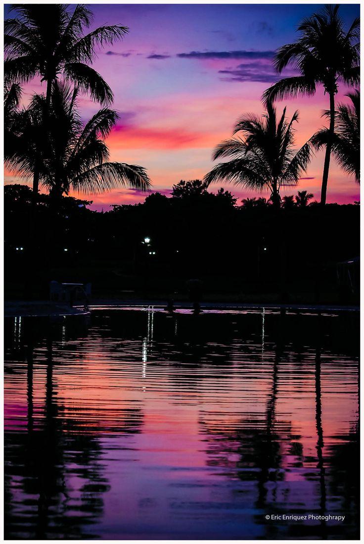 sunset purple red palms water reflection beautiful ♥♥♥♥