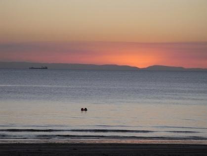 Moreton Island, AUS
