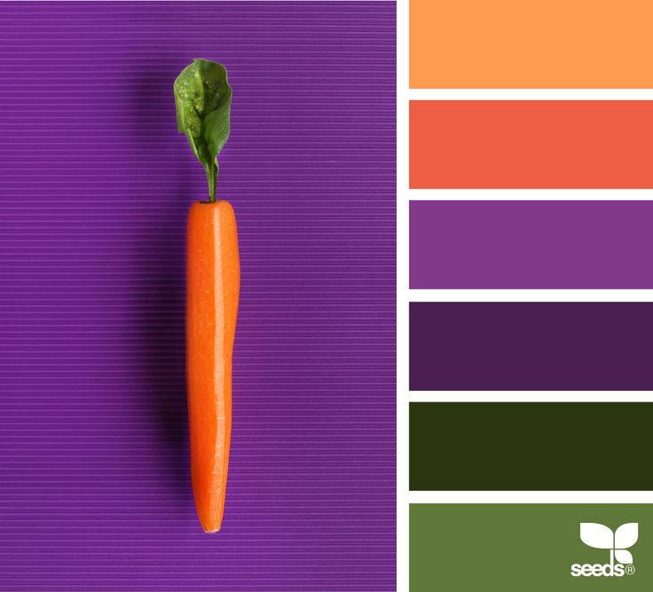 Best 25+ Color Palette Green Ideas On Pinterest