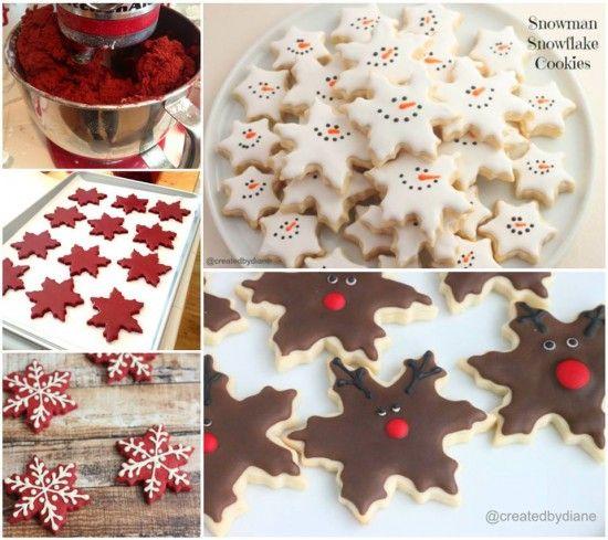 vánoční hvězdičky i jako dárek