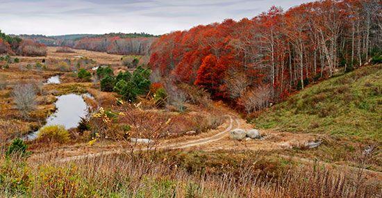 Tidmarsh overlook in autumn © Jeanne Lesperance  Plymouth