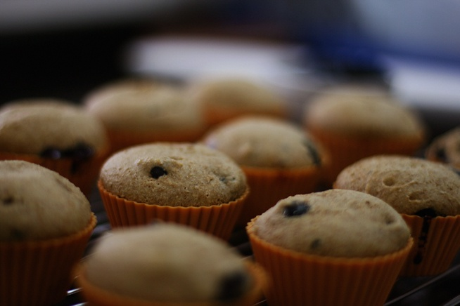 Blueberry muffins | Receitas | Recipes | Pinterest | Blueberries ...