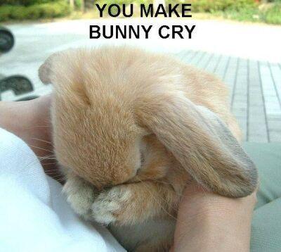 Oh mein Gott, du hast Bunny zum Weinen gebracht! Hehehe süß