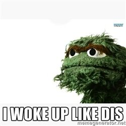 Oscar the grouch meme -  I woke up like dis