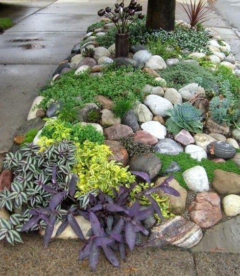 rock garden garden landscapinglandscaping