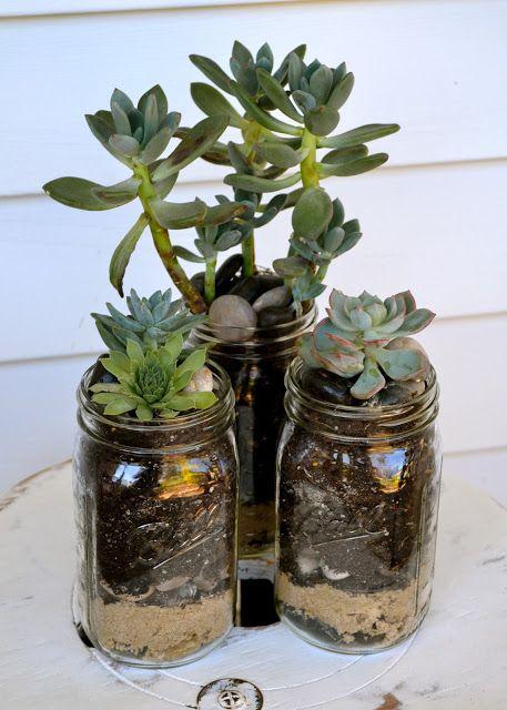 The Domestic Doozie: Mason Jar Succulent Planters