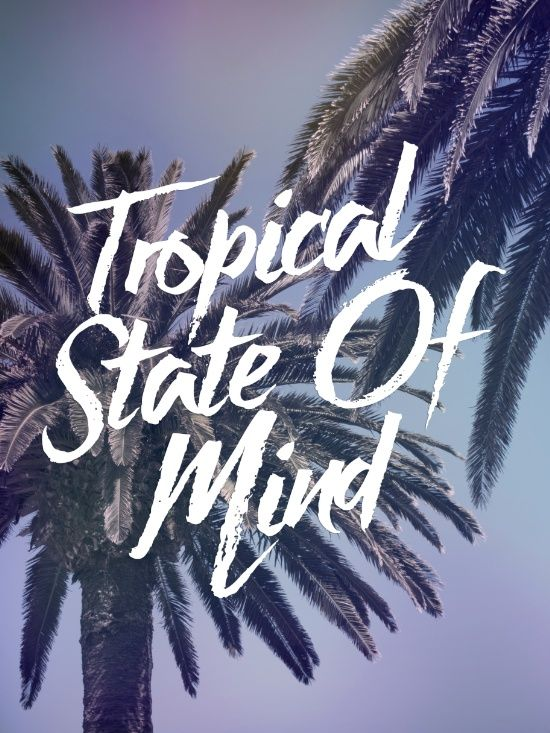 Tropical State Of Mind Art Print