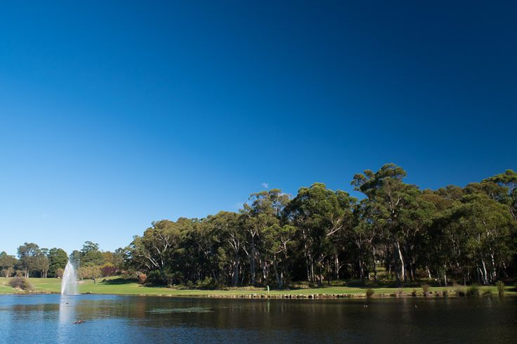 L1M1AS3-Landscapes ISO 400 18mm f/9.0 1/160 sec Nikkon D5500 taken in the late morning at the lake within Macquarie University.