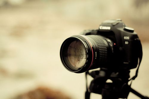 Pin by Kit on [ Photog ] | Pinterest | Cameras and Photography