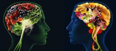 egészséges táplálkozás, agy
