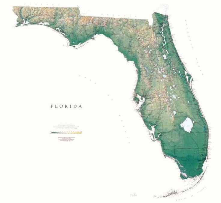 Netherlands Elevation Map%0A Florida  Physical  Laminated Wall Map by Raven Maps