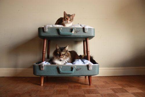 Amazing pet beds from Etsy shopSalvageShack! Loving the double decker converted suitcase pet beds. She has a way with salvaged materials as anyone browsing her sold items would agree.