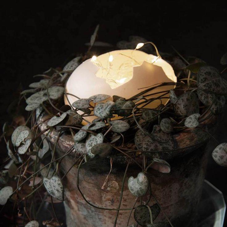 Ghirlandă luminoasă Flora argintie cu 3 capete
