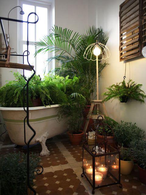 Nach Reperatur vielleicht auch Badewanne voll Pflanzen?