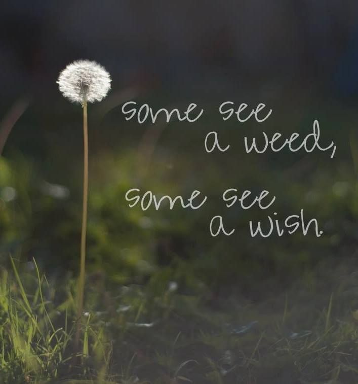 please may i be the kind of person always to see a wish