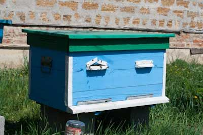 Выбираем улей для пчеловождения