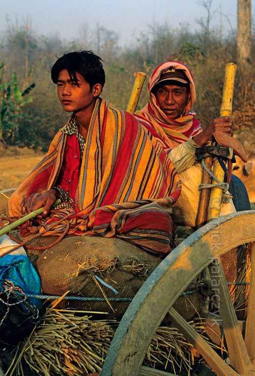 Myanmar:In the early morning light farmers are heading for their fields on an ox-cart in the highlands west of Kalaw. Photo Mick Palarczyk.