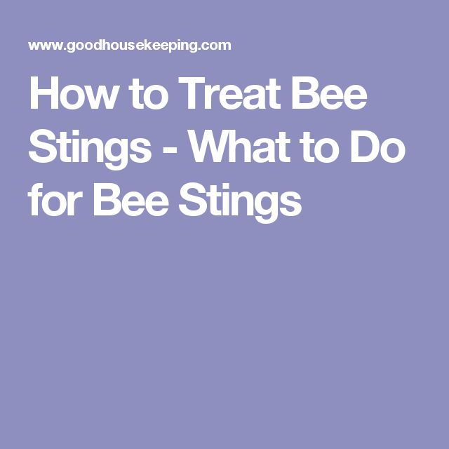 How to Treat Bee Stings - What to Do for Bee Stings