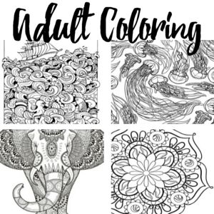 I found these 11 Free Printable Adult Coloring Pages. I had to set up the printer, of course, but it was totally worth it...ah, free time, where art thou...