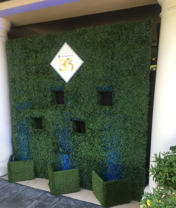 Rsvp Events Dreamed Up This Boxwood Hedge Wall For