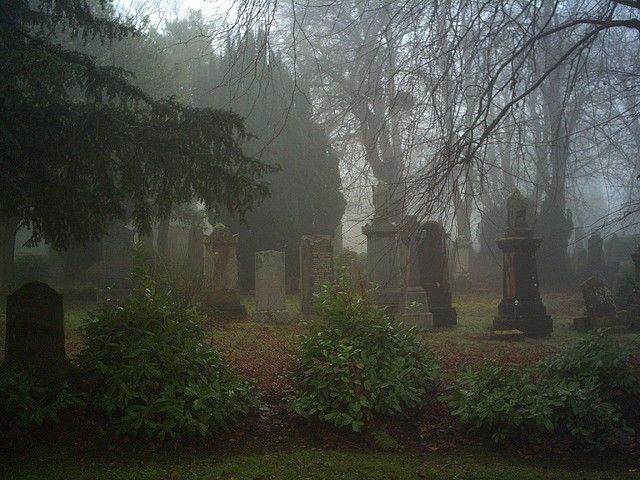 Greenock Cemetery | by Strength