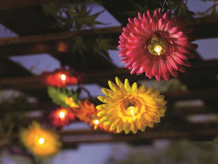 Pier 1 Daisy String Lights bring ambient lighting outdoors Spring is in the Air & Summa is ...