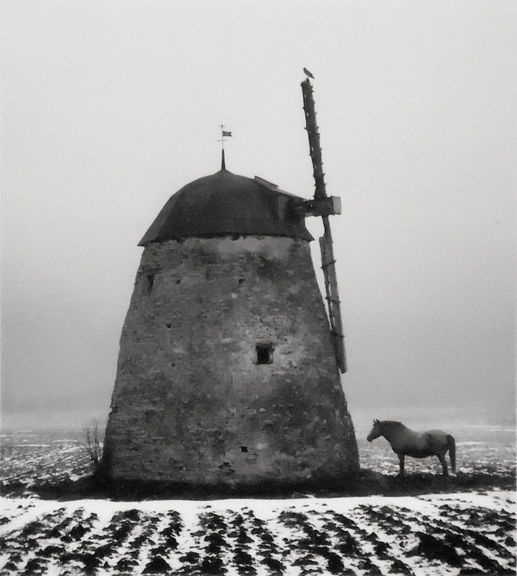 Untitled [Horse & windmill] 1982 Photo by Finnish photographer Pentti Sammallahti. http://www.valokuvataiteenmuseo.fi/en/component/content/article/10321