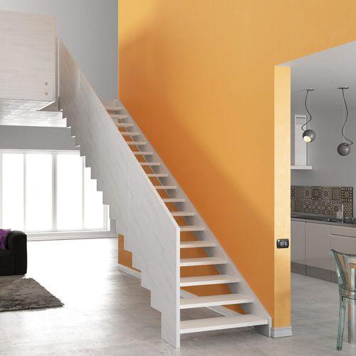 Escalier Droit Marche En Bois Structure En Bois Sans