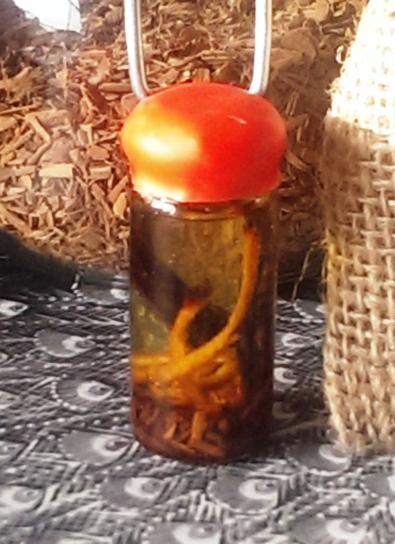 Authentic Wiccan Potion - Hand Crafted - Spell Bottle - Light Magick - Goddess Enhancing - Courage and Passion - Elemental Fire - Organic Herbs - Essential Oils - Sweet Orange and Cinnamon Infused - Wicca on the Go!