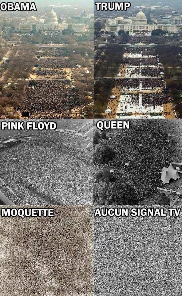 insolite comparaison floyd foule investiture moquette obama pink queen signal tele trump