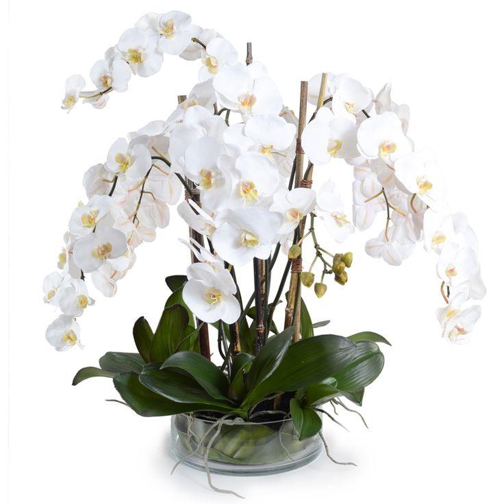 White Phalaenopsis Orchid Faux Arrangement
