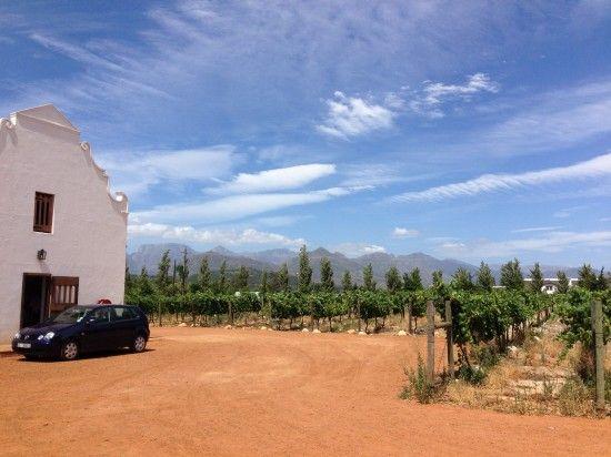 My Big Five - Places To Visit In South Africa | Solms Delta Wine Estate, Franschhoek home of La Clé des Montagnes 4 luxurious villas on a working wine farm.
