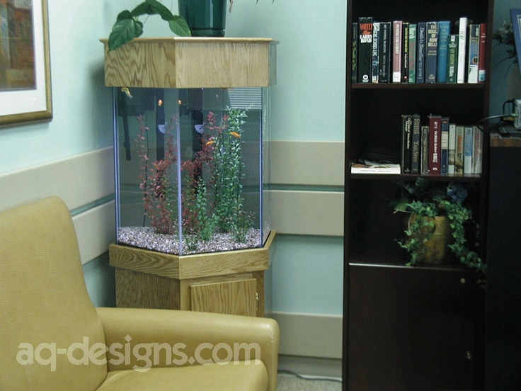 65 gallon hexagon aquarium in a patient day room at va for 65 gallon fish tank