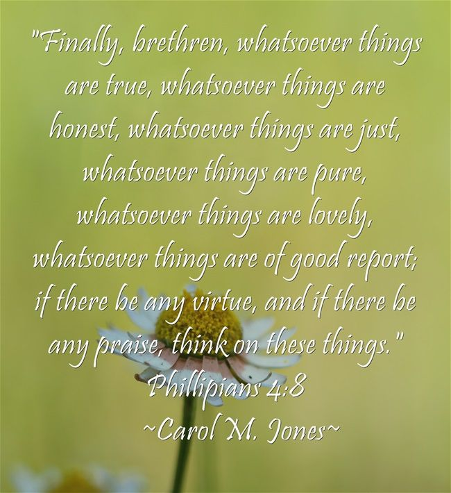 Finally, brethren, whatsoever things are true, whatsoever things are honest, whatsoever things are just, whatsoever things are pure, whatsoever things are lovely, whatsoever things are of good report; if there be any virtue, and if there be any praise, think on these things. Phillipians 4:8   ~Carol M. Jones~