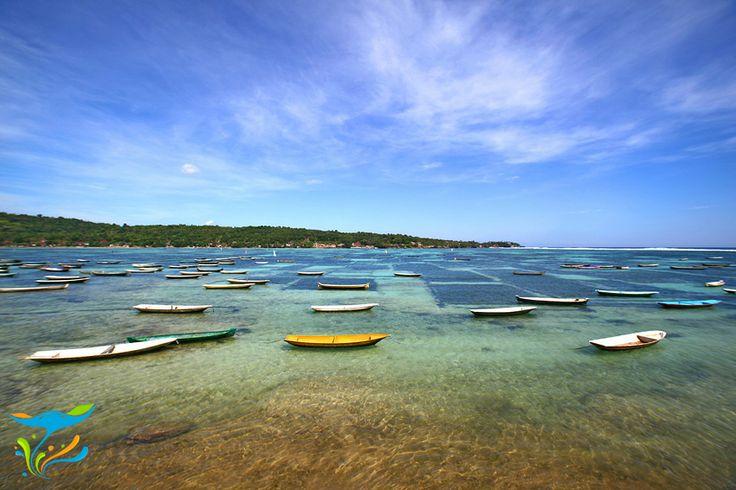 Lahan pertanian rumput laut di selat yang memisahkan Nusa Lembongan dan Nusa Ceningan. Seperti sawah, yang berwarna gelap itu sedang ditanami rumput laut, yang berwarna terang baru saja dipanen dan belum ditanami lagi.