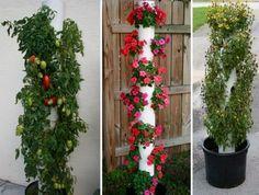 DIY függőleges kert