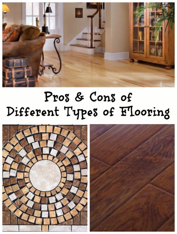 1000 images about wow did you know on pinterest for Cherry flooring pros and cons