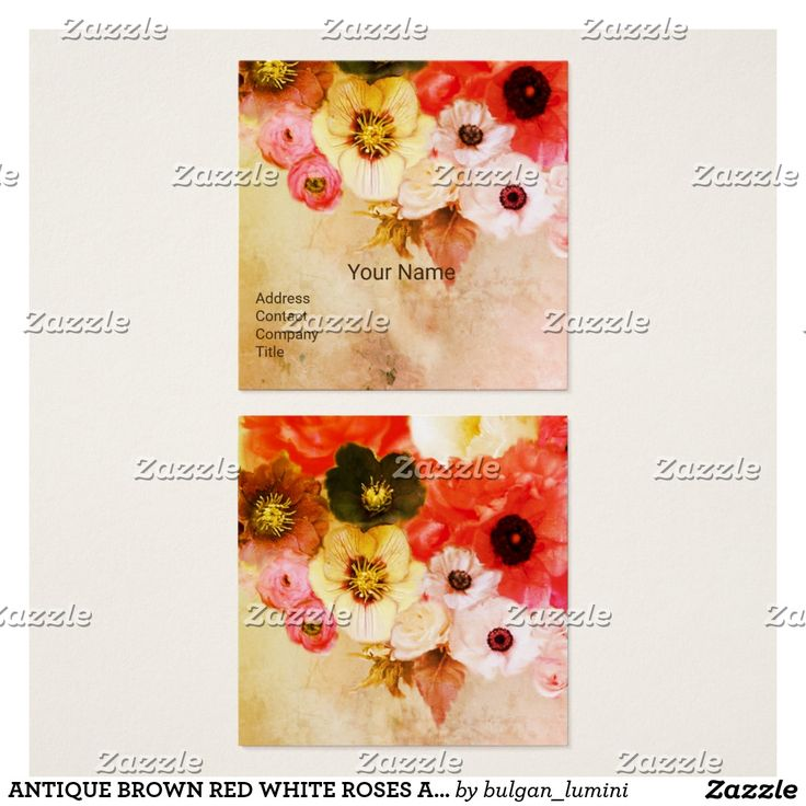 ANTIQUE BROWN RED WHITE ROSES AND ANEMONE FLOWERS SQUARE BUSINESS CARD #beauty #nature #plants #rose #flowers #floral