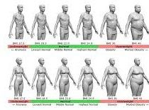 Alternatives for the BMI - Body Mass Index