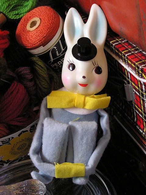 stylish bunny: Photo
