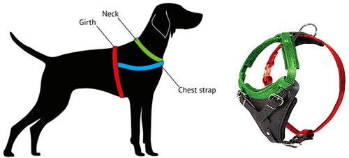 Get Classic Leather Dog Harness for Great Dane Attack Training/Walking
