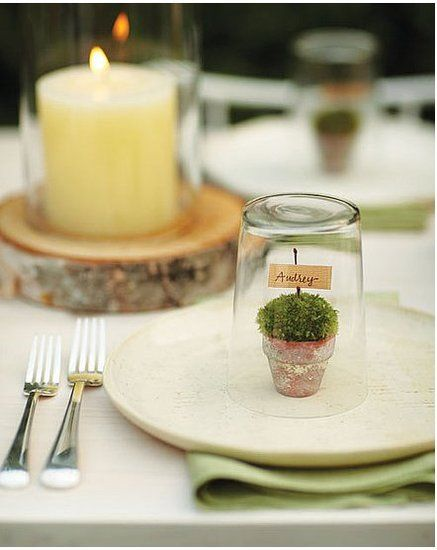 charming tablescape with mini terrarium placecards on each plate.