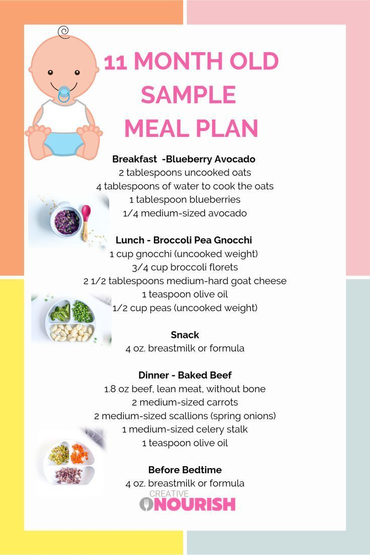 diet for 11 month old